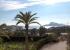 Просторная вилла с большим участком рядом с морем в г. Алтея, север побережья Коста-Бланка